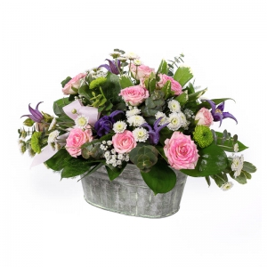 Flowers by Ann - Florence 45.00 Container